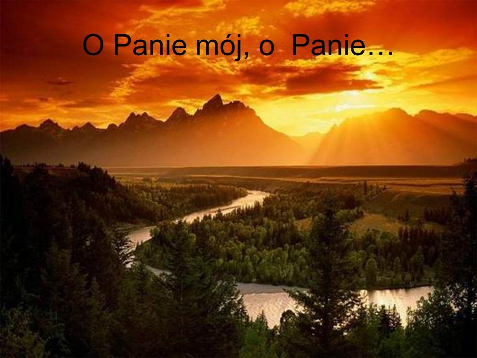 O Panie mój, o Panie…
