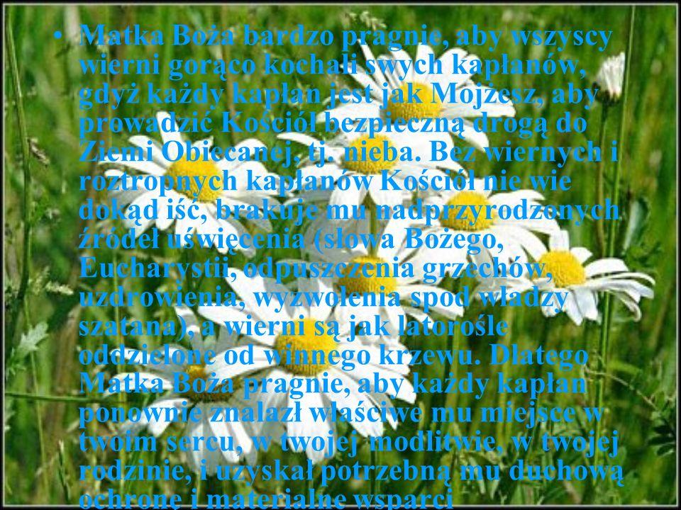 Matka Boża bardzo pragnie, aby wszyscy wierni gorąco kochali swych kapłanów, gdyż każdy kapłan jest jak Mojżesz, aby prowadzić Kościół bezpieczną drog