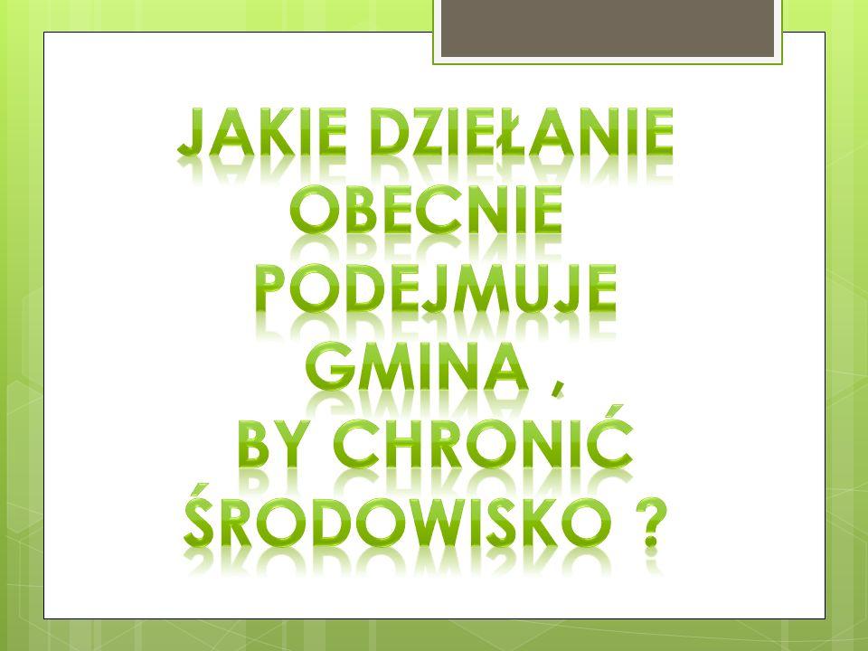 W latach 2004 – 2011 Gmina Włoszczowa objęta była Specjalnym Programem Ochrony Środowiska.