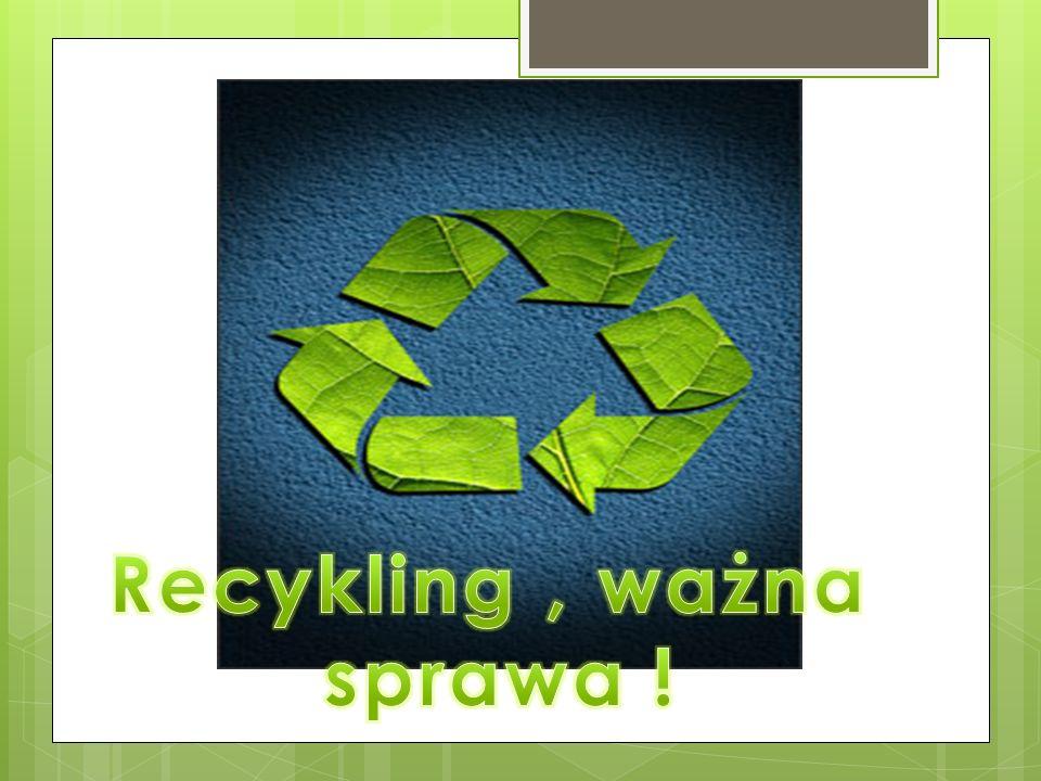 -Organizuje akcje sprzątania ulic -Organizuje akcje sprzątania lasów -Promuje akcje mające zachęcić do ochrony środowiska -Mamy oczyszczalnię ścieków -Segregujemy odpady
