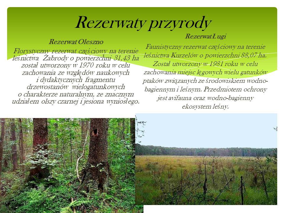 Rezerwaty przyrody Rezerwat Oleszno Florystyczny rezerwat cz ęś ciowy na terenie le ś nictwa Zabrody o powierzchni 31,43 ha zosta ł utworzony w 1970 r