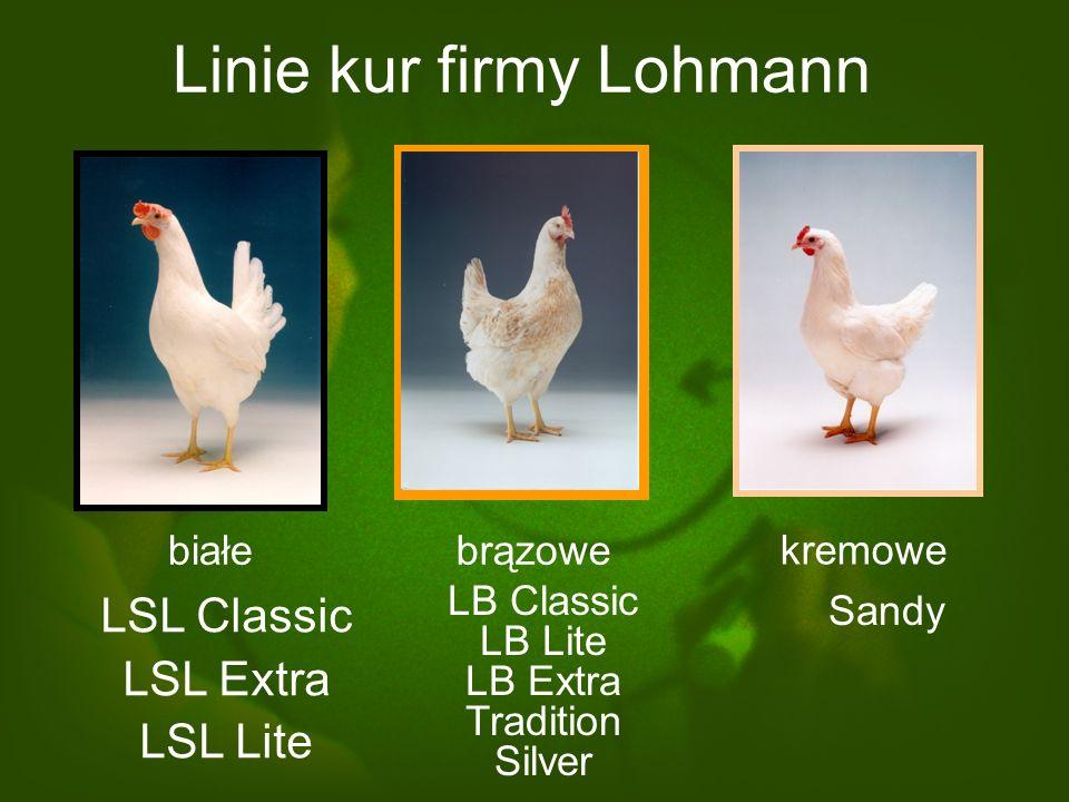 Linie do wielkotowarowej produkcji nieśnej HY-LINE - LOHMANN TIERZUCHT
