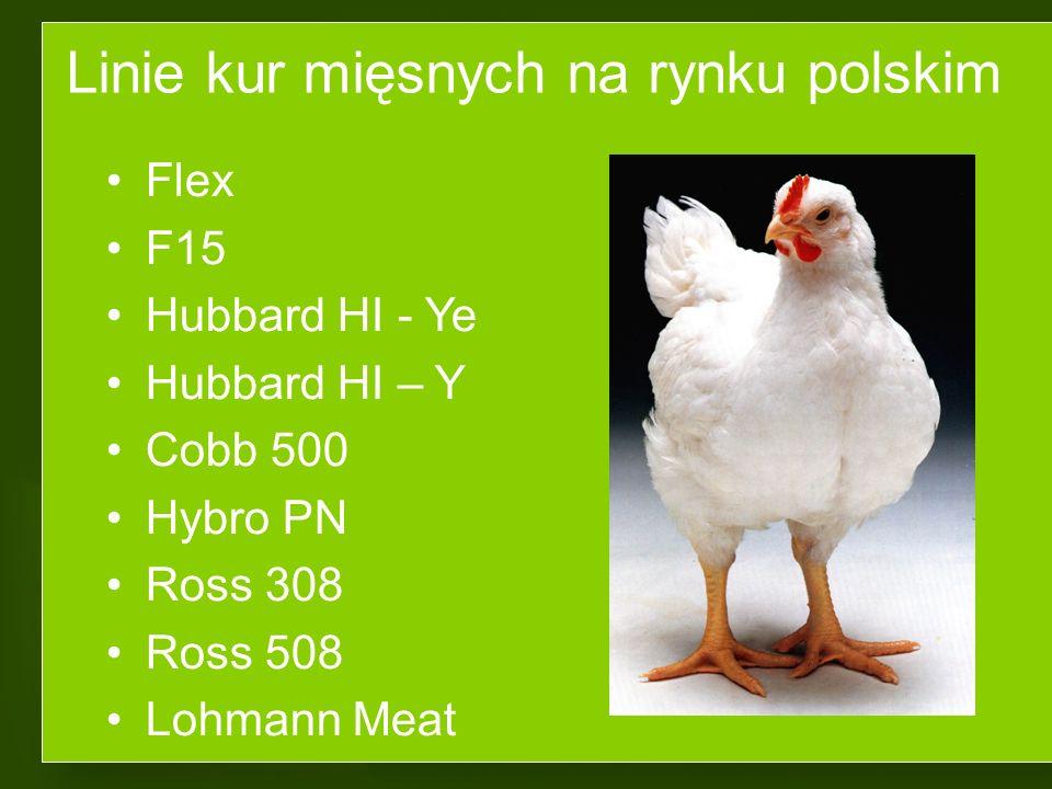 Tytuł wykładu Chów kur kierunku mięsnego