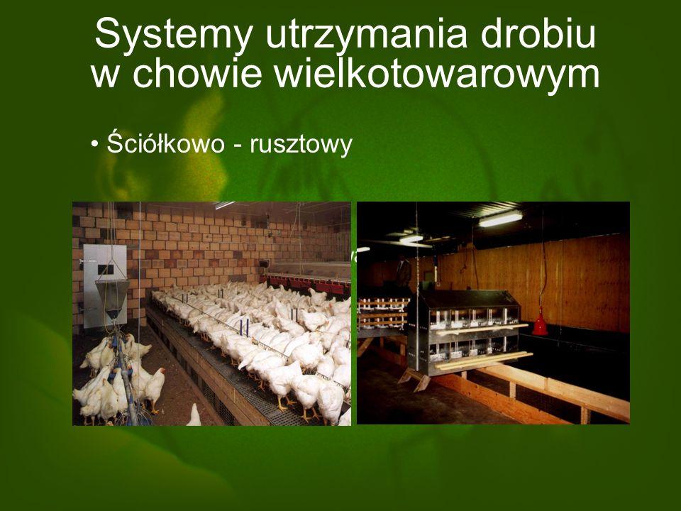 Systemy utrzymania drobiu w chowie wielkotowarowym Podłogowy (na głębokiej ściółce) (budynki bezokienne, bezwybiegowe, o kontrolowanych warunkach środ