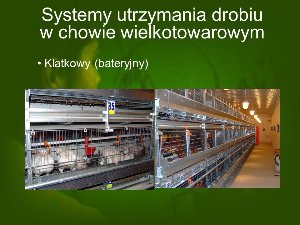 Systemy utrzymania drobiu w chowie wielkotowarowym Klatkowy (bateryjny)