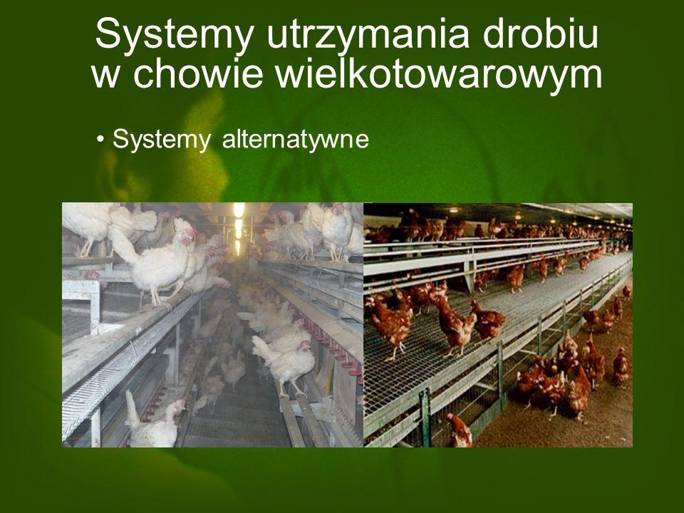 Systemy utrzymania drobiu w chowie wielkotowarowym Systemy alternatywne