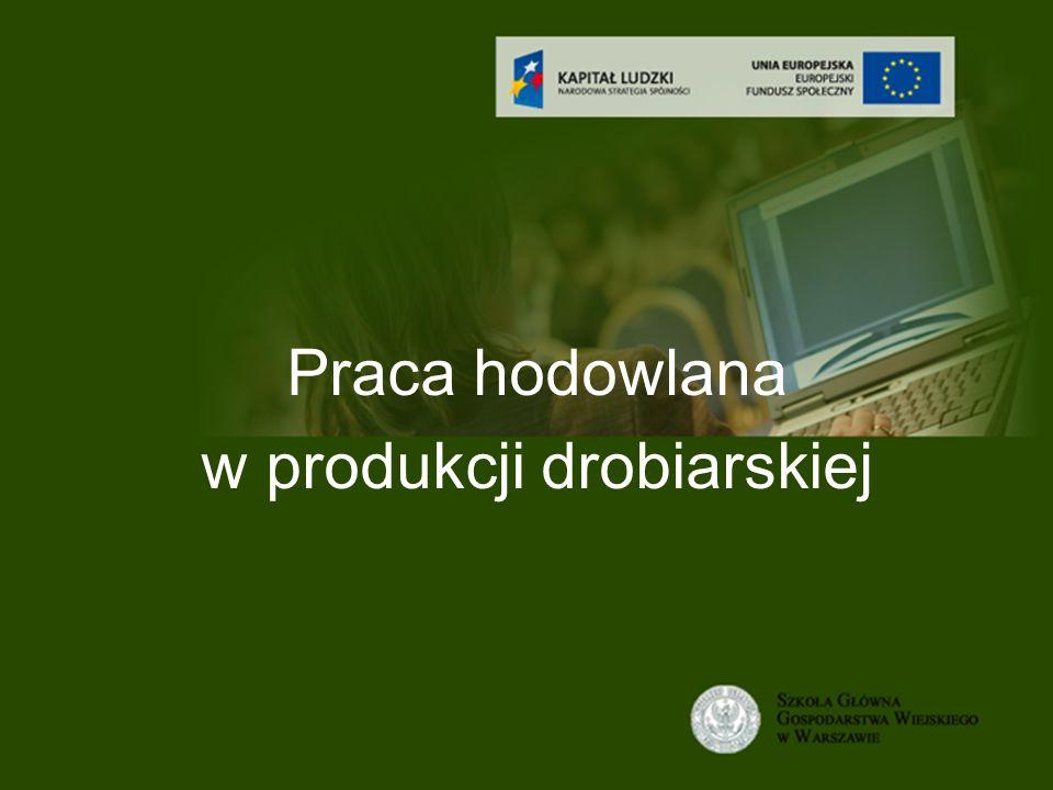 Tytuł wykładu Praca hodowlana w produkcji drobiarskiej