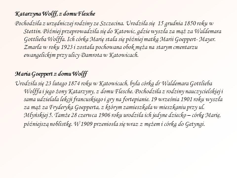 Katarzyna Wolff, z domu Flesche Pochodziła z urzędniczej rodziny ze Szczecina. Urodziła się 15 grudnia 1850 roku w Stettin. Później przeprowadziła się