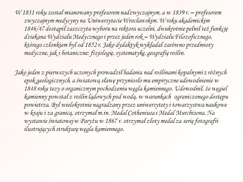W 1831 roku został mianowany profesorem nadzwyczajnym, a w 1839 r. – profesorem zwyczajnym medycyny na Uniwersytecie Wrocławskim. W roku akademickim 1