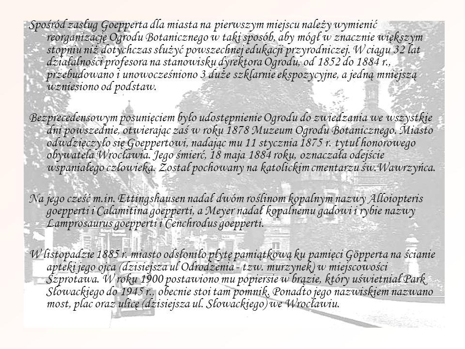 Rodzina Flescheów Katarzyna Wolff, z domu Flesche Pochodziła z urzędniczej rodziny ze Szczecina.