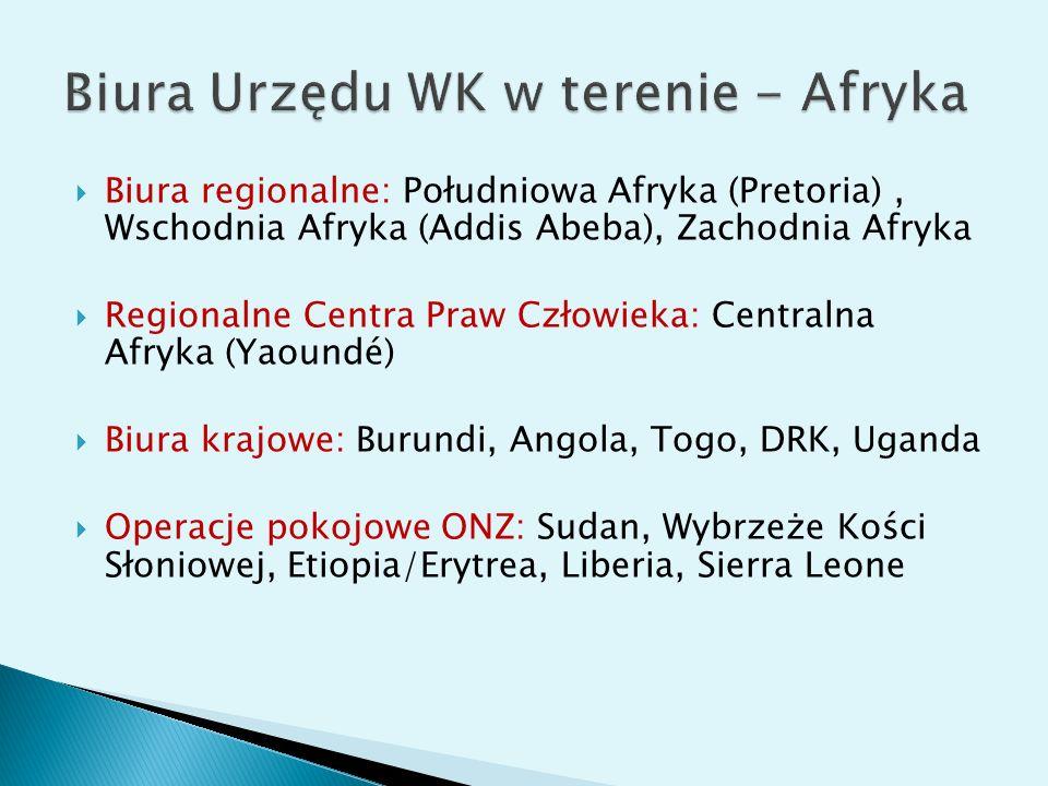 Biura regionalne: Południowa Afryka (Pretoria), Wschodnia Afryka (Addis Abeba), Zachodnia Afryka Regionalne Centra Praw Człowieka: Centralna Afryka (Yaoundé) Biura krajowe: Burundi, Angola, Togo, DRK, Uganda Operacje pokojowe ONZ: Sudan, Wybrzeże Kości Słoniowej, Etiopia/Erytrea, Liberia, Sierra Leone