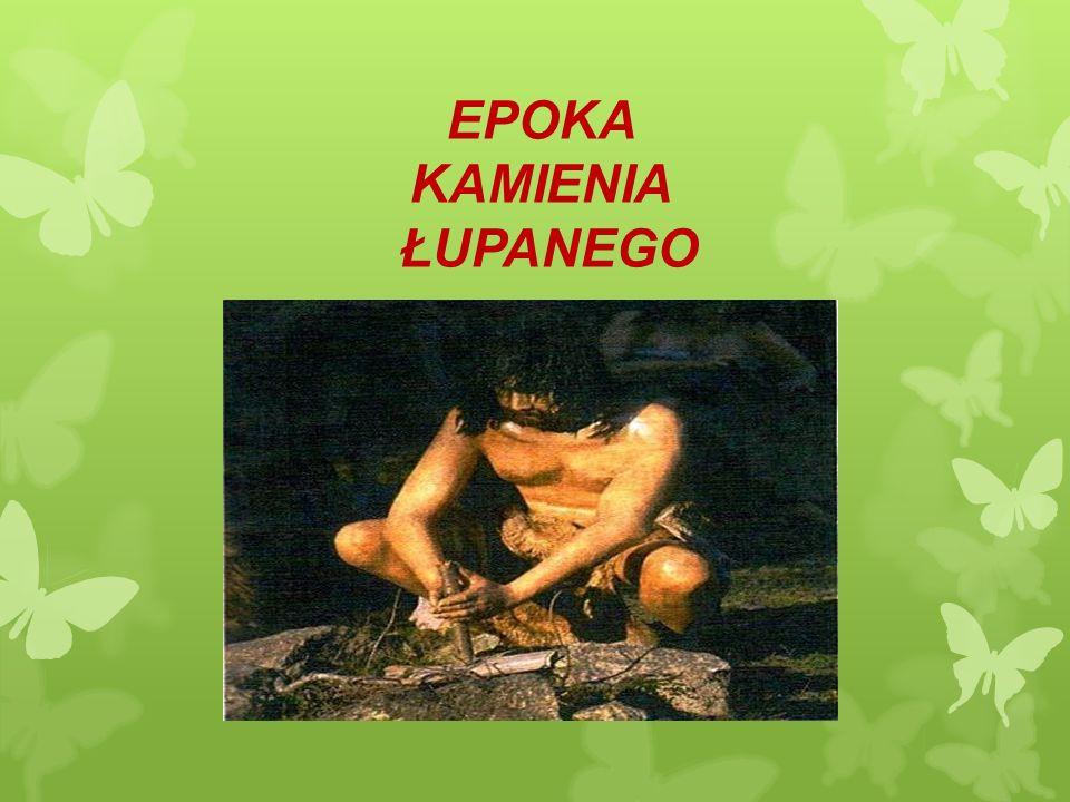 EPOKA KAMIENIA ŁUPANEGO