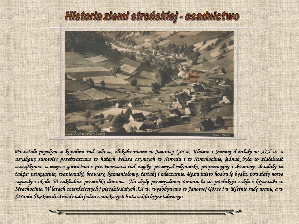 Pozostałe pojedyncze kopalnie rud żelaza, zlokalizowane w Janowej Górze, Kletnie i Siennej działały w XIX w. a uzyskany surowiec przetwarzano w hutach