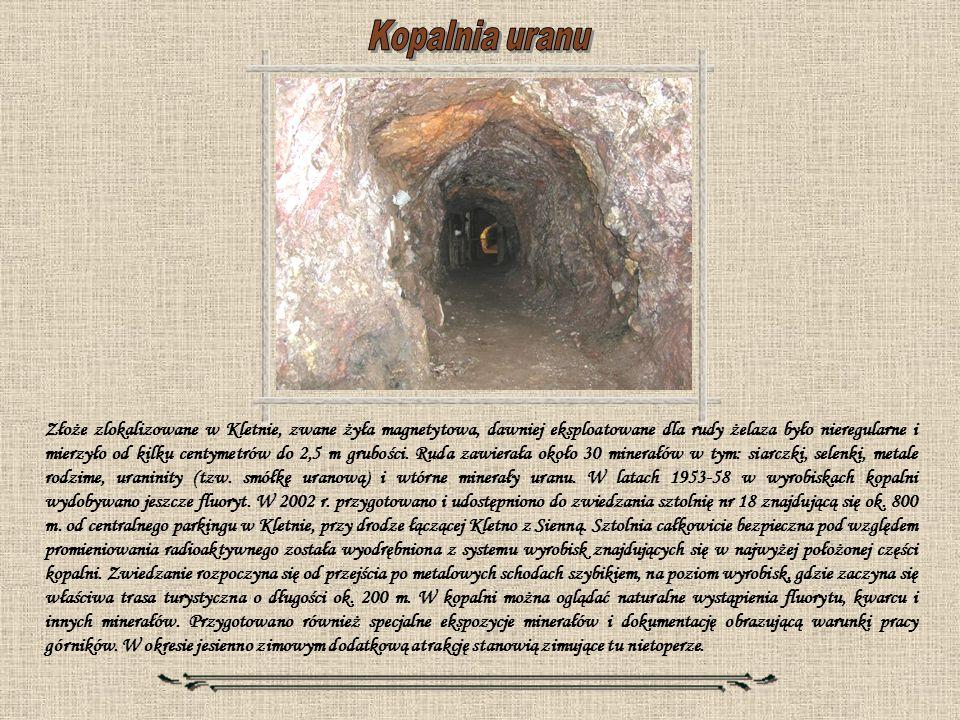 Złoże zlokalizowane w Kletnie, zwane żyła magnetytowa, dawniej eksploatowane dla rudy żelaza było nieregularne i mierzyło od kilku centymetrów do 2,5