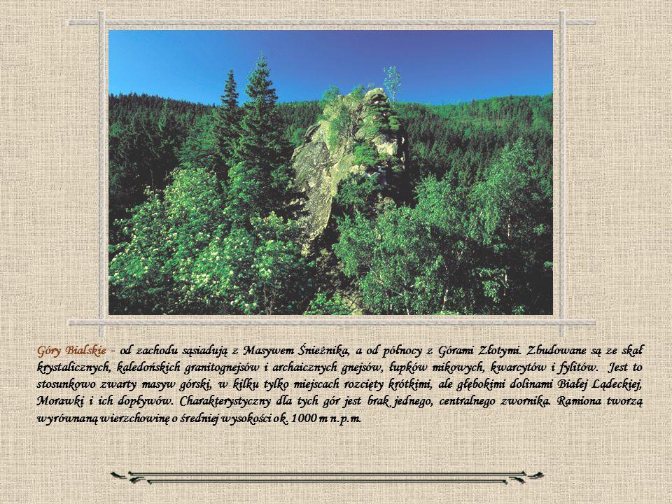 Góry Bialskie - od zachodu sąsiadują z Masywem Śnieżnika, a od północy z Górami Złotymi. Zbudowane są ze skał krystalicznych, kaledońskich granitognej
