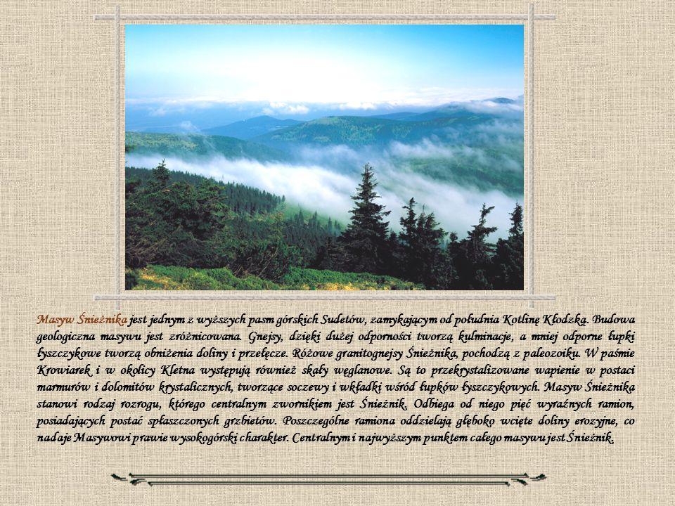 Masyw Śnieżnika jest jednym z wyższych pasm górskich Sudetów, zamykającym od południa Kotlinę Kłodzką. Budowa geologiczna masywu jest zróżnicowana. Gn