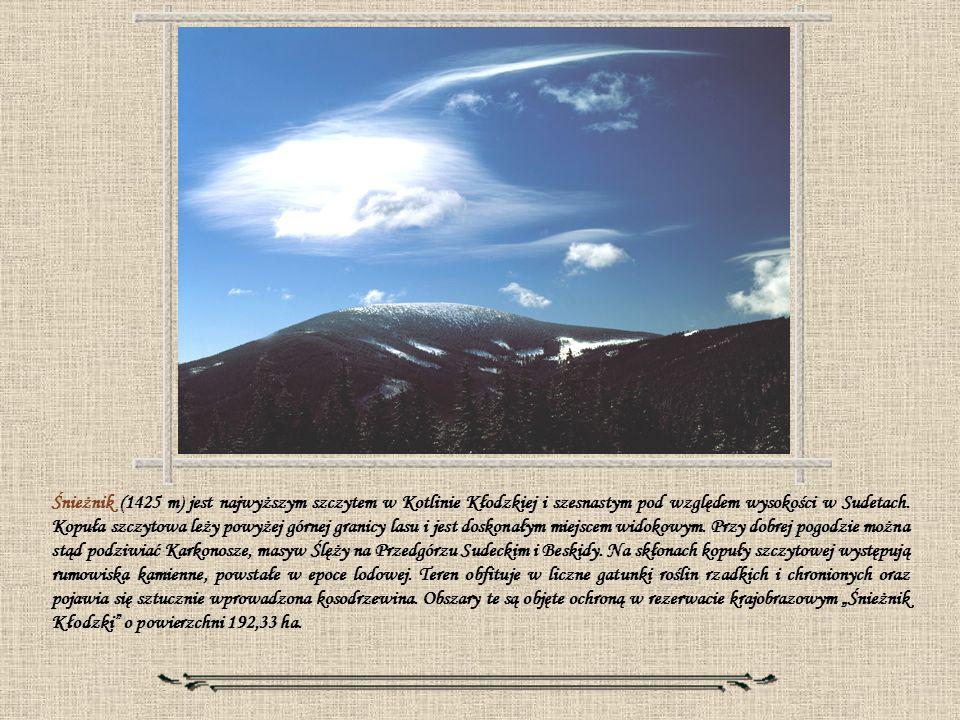 Śnieżnik (1425 m) jest najwyższym szczytem w Kotlinie Kłodzkiej i szesnastym pod względem wysokości w Sudetach. Kopuła szczytowa leży powyżej górnej g