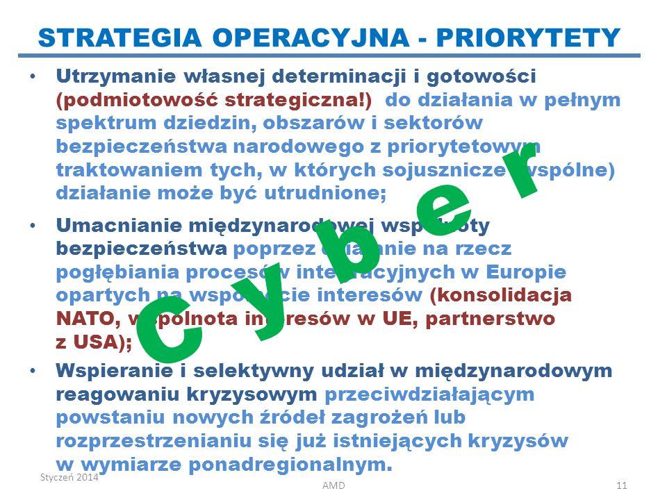 Utrzymanie własnej determinacji i gotowości (podmiotowość strategiczna!) do działania w pełnym spektrum dziedzin, obszarów i sektorów bezpieczeństwa n