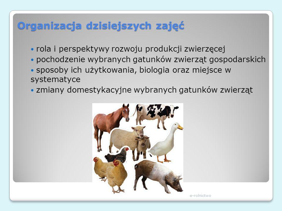 Organizacja dzisiejszych zajęć rola i perspektywy rozwoju produkcji zwierzęcej pochodzenie wybranych gatunków zwierząt gospodarskich sposoby ich użytk