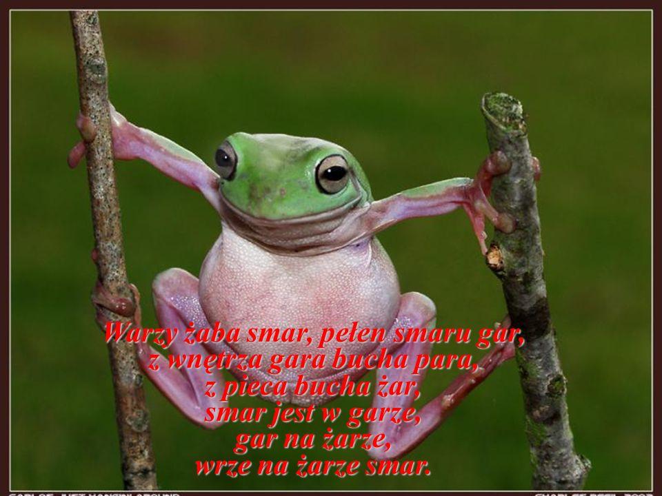 Warzy żaba smar, pełen smaru gar, z wnętrza gara bucha para, z pieca bucha żar, smar jest w garze, gar na żarze, wrze na żarze smar.