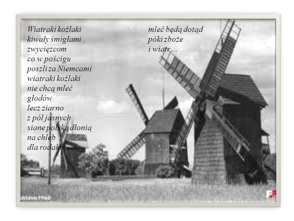 Wiatraki koźlaki kiwały śmigłami zwycięzcom co w pościgu poszli za Niemcami wiatraki koźlaki nie chcą mleć głodów lecz ziarno z pól jasnych siane polską dłonią na chleb dla rodaków mleć będą dotąd póki zboże i wiatr…