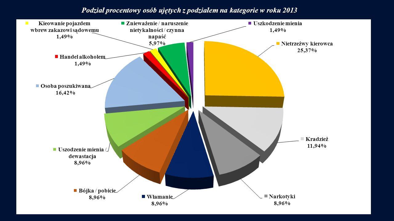 Podział procentowy osób ujętych z podziałem na kategorie w roku 2013