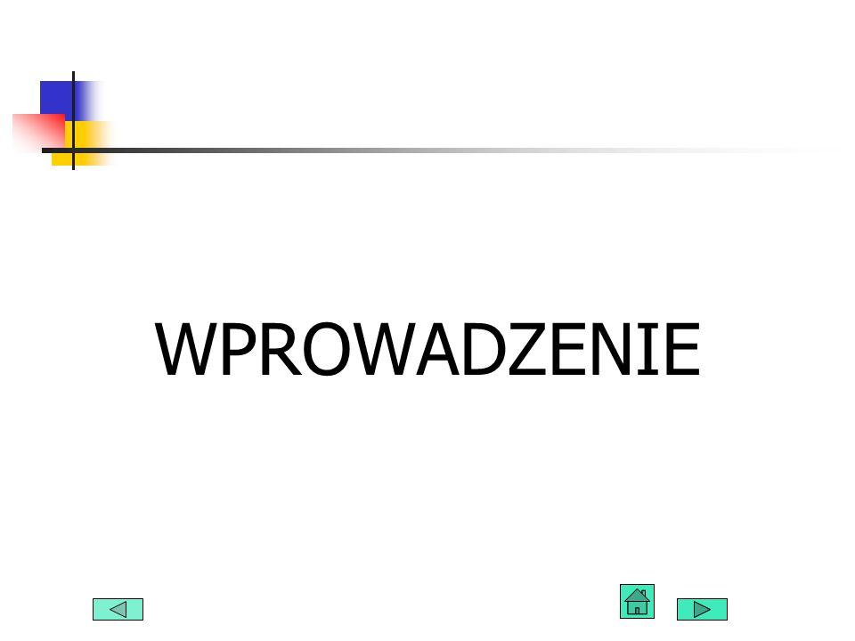 Łukasz Kubczak, Łukasz Slusarczyk107 W miarę przemieszczania się danych między kolejnymi warstwami modelu OSI, dodawane są nowe nagłówki i stopki.