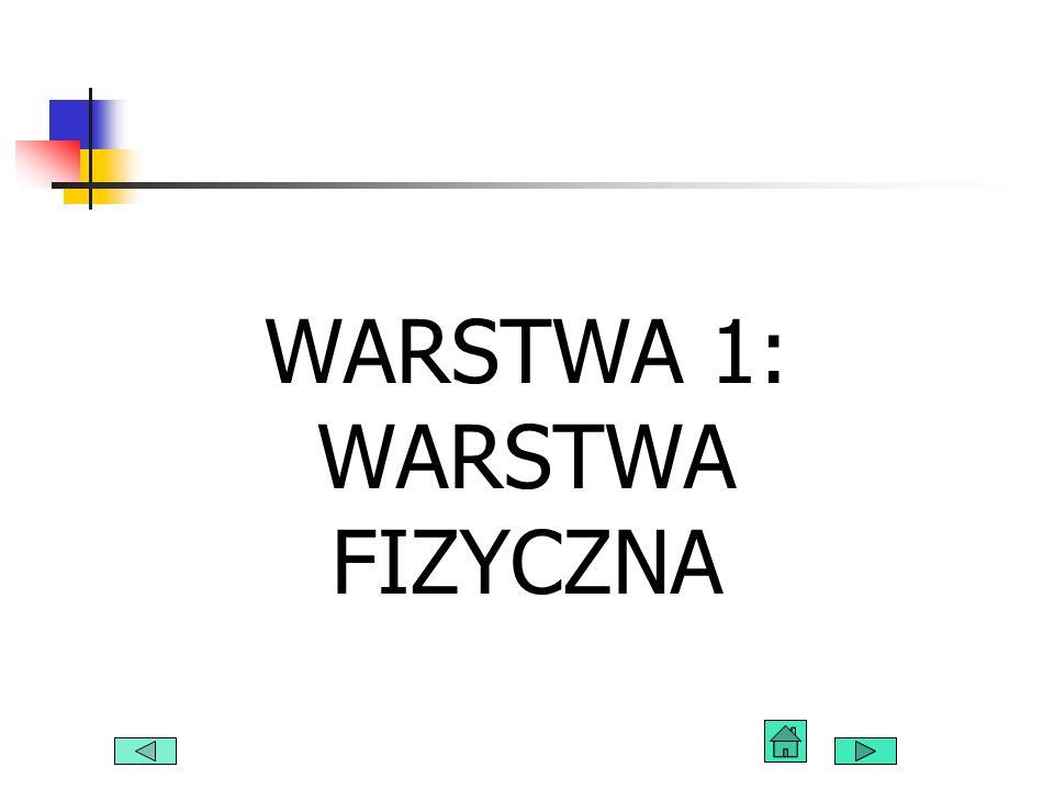 WARSTWA 1: WARSTWA FIZYCZNA