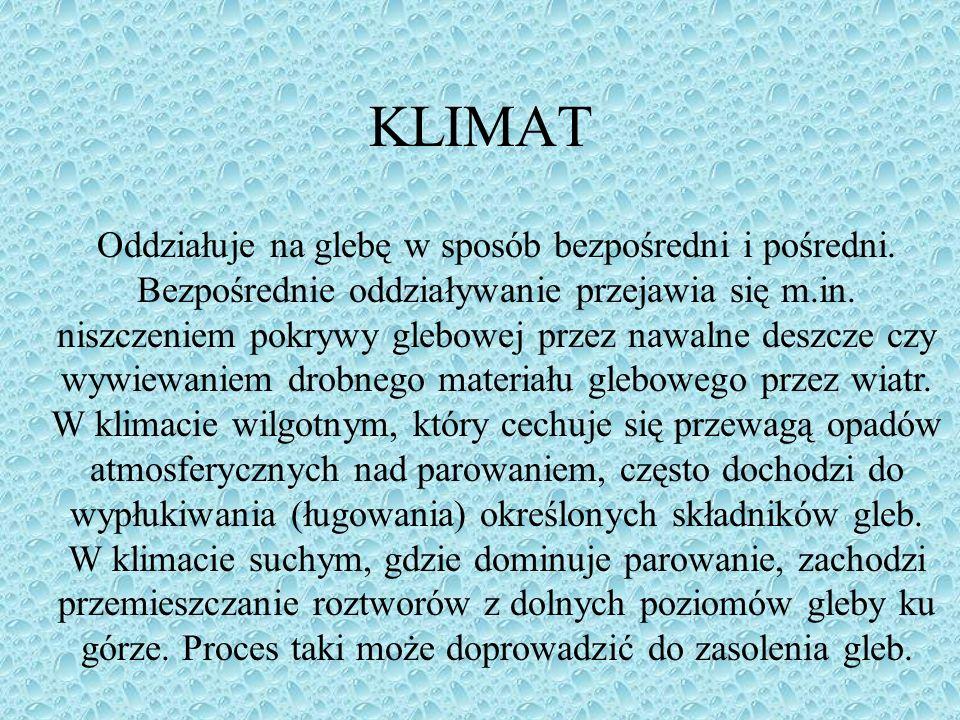 KLIMAT Oddziałuje na glebę w sposób bezpośredni i pośredni. Bezpośrednie oddziaływanie przejawia się m.in. niszczeniem pokrywy glebowej przez nawalne