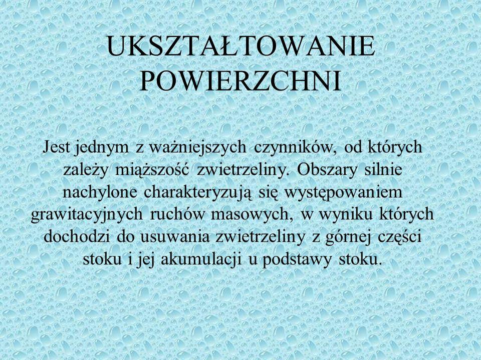 Prezentacja opracowana na podstawie: www.gleby2004.w.interia.pl P.