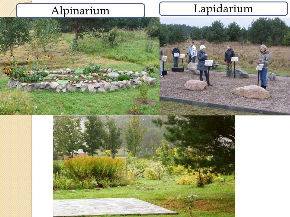Alpinarium Lapidarium