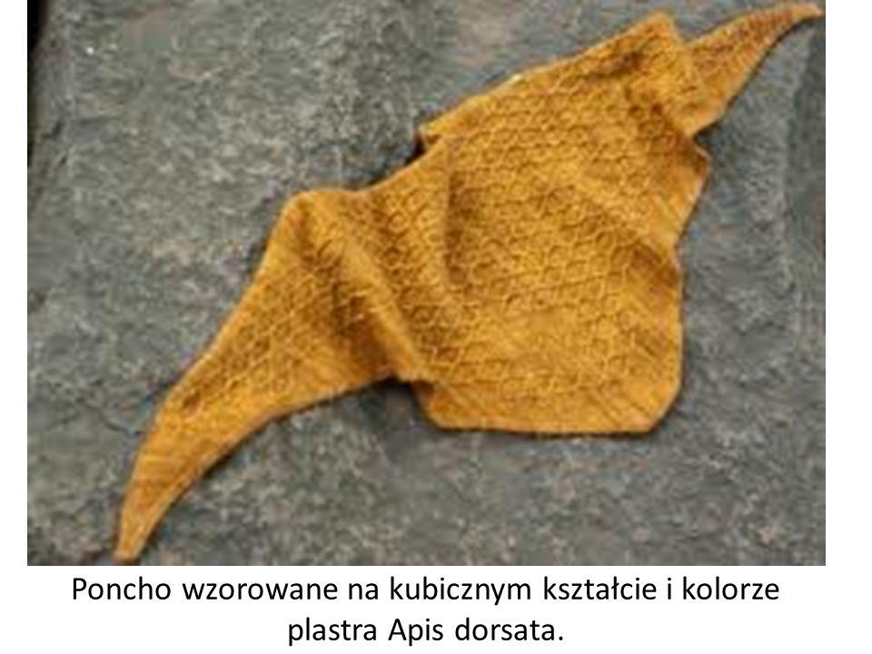 Poncho wzorowane na kubicznym kształcie i kolorze plastra Apis dorsata.
