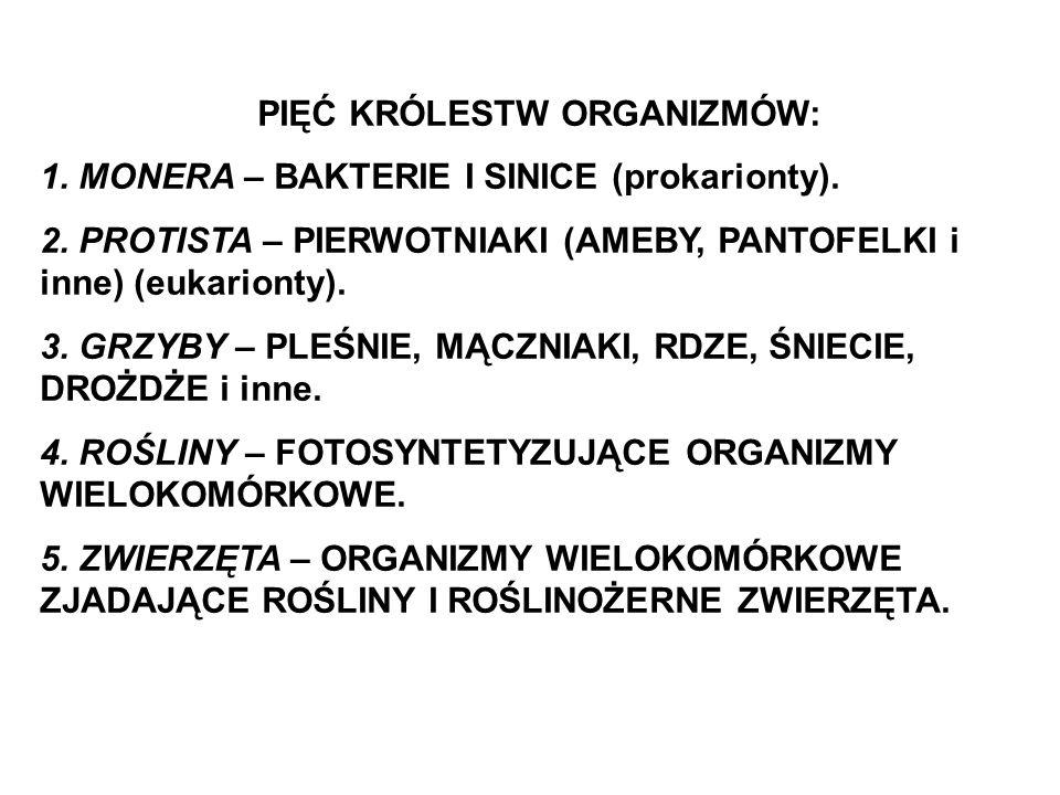 PIĘĆ KRÓLESTW ORGANIZMÓW: 1. MONERA – BAKTERIE I SINICE (prokarionty). 2. PROTISTA – PIERWOTNIAKI (AMEBY, PANTOFELKI i inne) (eukarionty). 3. GRZYBY –