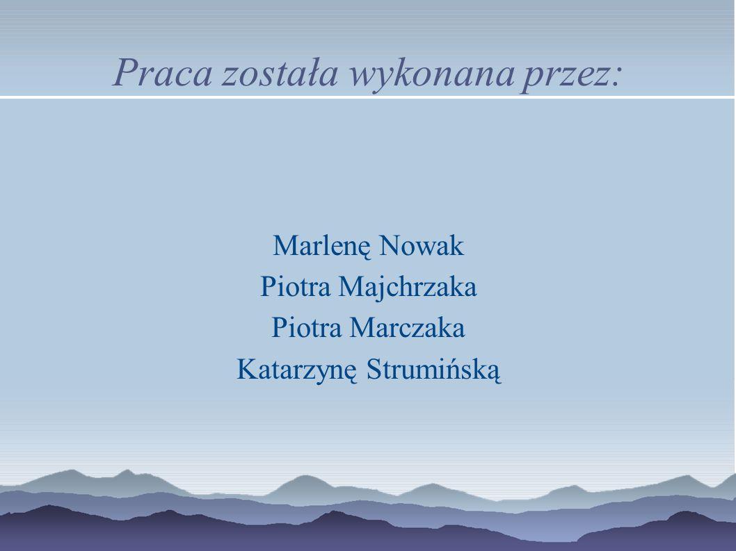 Praca została wykonana przez: Marlenę Nowak Piotra Majchrzaka Piotra Marczaka Katarzynę Strumińską