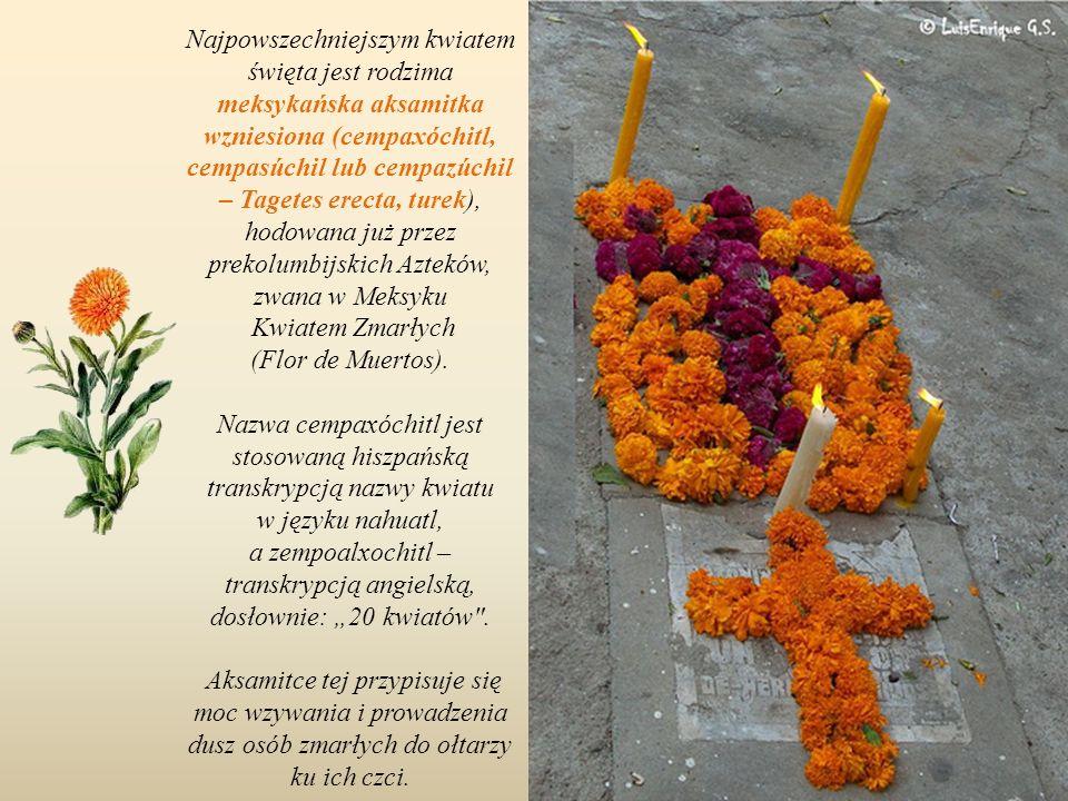 Na cmentarzu w San Antonio Tecómitl w Milpa Alpa, dzielnicy Mexico City.
