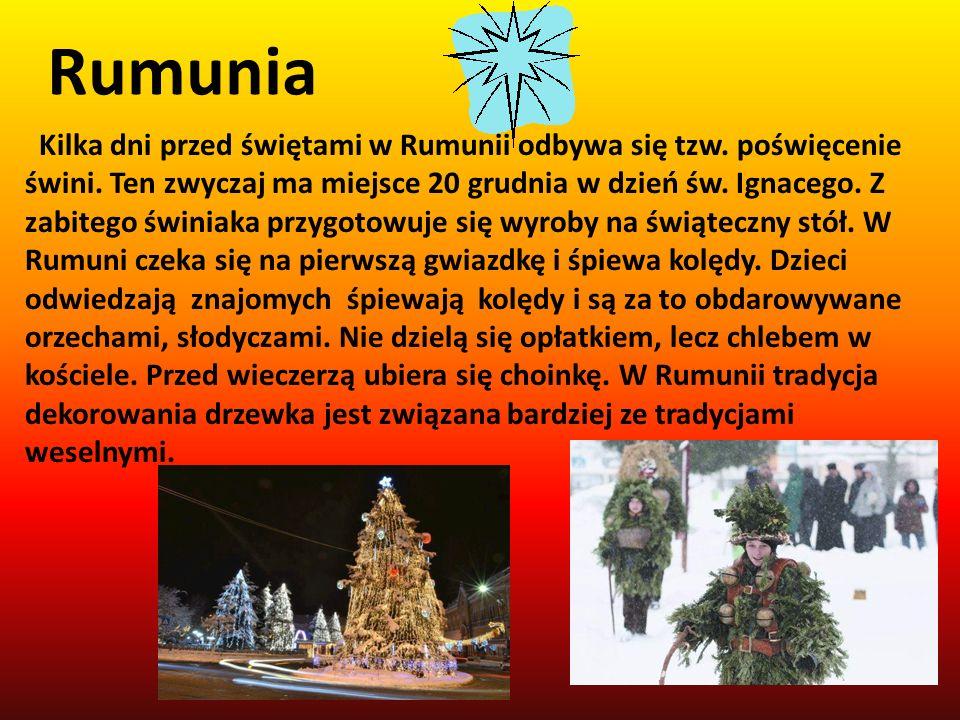 Kilka dni przed świętami w Rumunii odbywa się tzw. poświęcenie świni. Ten zwyczaj ma miejsce 20 grudnia w dzień św. Ignacego. Z zabitego świniaka przy
