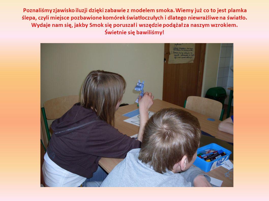 Poznaliśmy zjawisko iluzji dzięki zabawie z modelem smoka. Wiemy już co to jest plamka ślepa, czyli miejsce pozbawione komórek światłoczułych i dlateg
