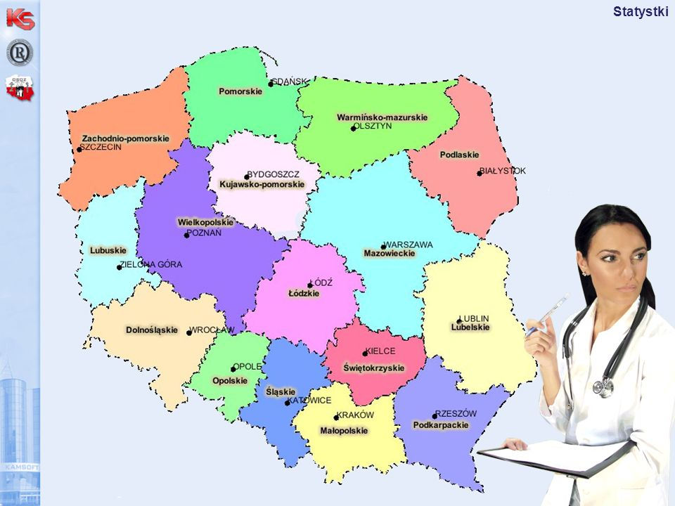 Spotkanie z Partnerami - kwiecień 2008 Statystki