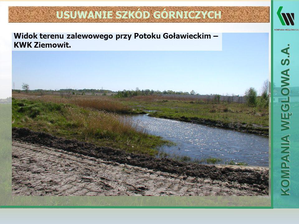 KOMPANIA WĘGLOWA S.A. Widok terenu zalewowego przy Potoku Goławieckim – KWK Ziemowit. USUWANIE SZKÓD GÓRNICZYCH