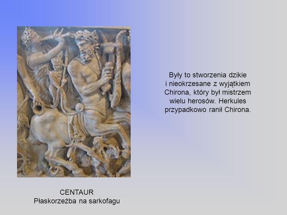 CENTAUR Płaskorzeźba na sarkofagu Były to stworzenia dzikie i nieokrzesane z wyjątkiem Chirona, który był mistrzem wielu herosów. Herkules przypadkowo