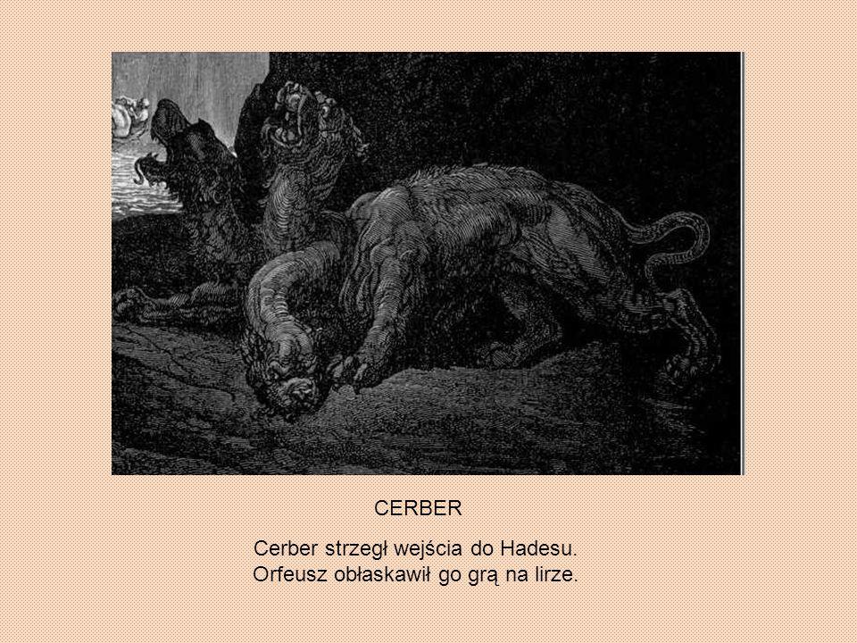 CERBER Cerber strzegł wejścia do Hadesu. Orfeusz obłaskawił go grą na lirze.