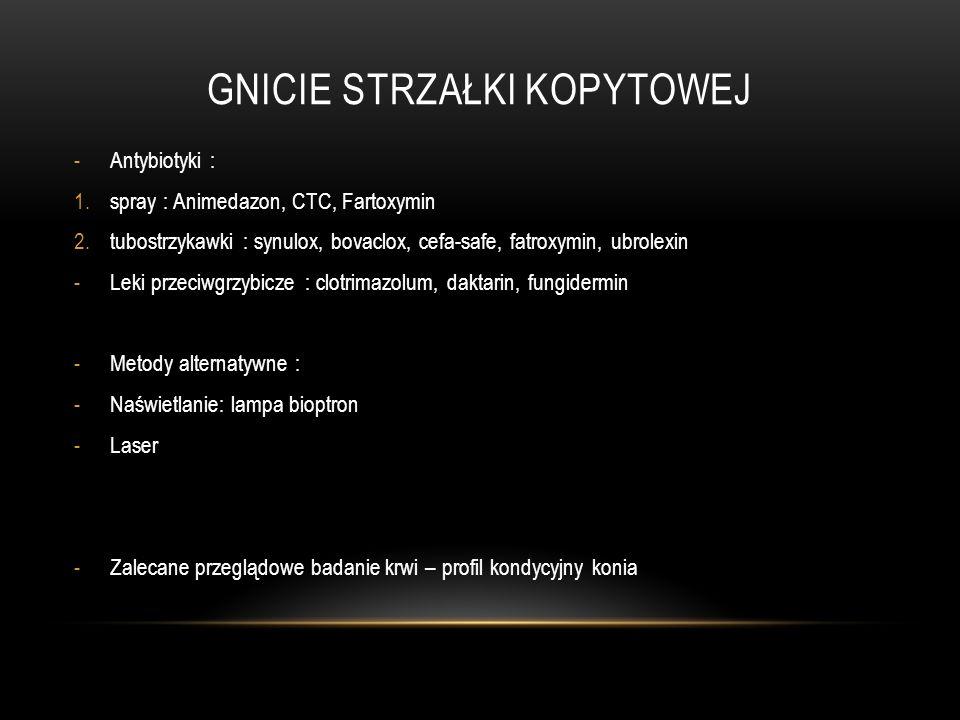 GNICIE STRZAŁKI KOPYTOWEJ -Antybiotyki : 1.spray : Animedazon, CTC, Fartoxymin 2.tubostrzykawki : synulox, bovaclox, cefa-safe, fatroxymin, ubrolexin
