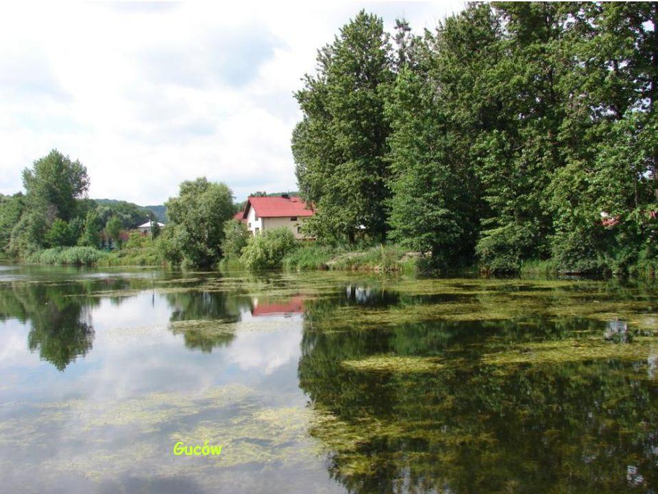 Chata w okolicach Złotego Potoku
