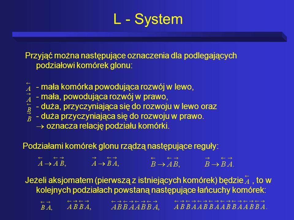 L - System Przyjąć można następujące oznaczenia dla podlegających podziałowi komórek glonu: - mała komórka powodująca rozwój w lewo, - mała, powodując