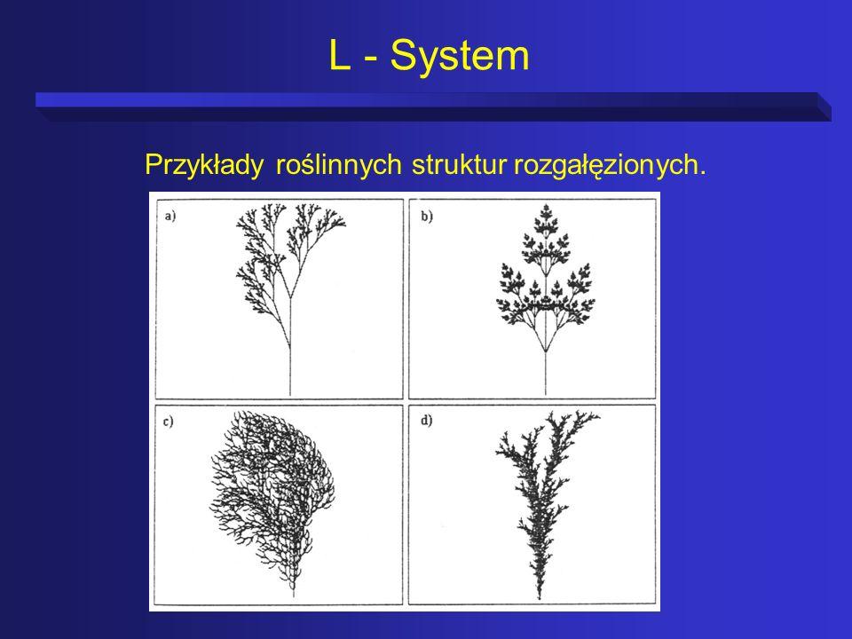 L - System Przykłady roślinnych struktur rozgałęzionych.