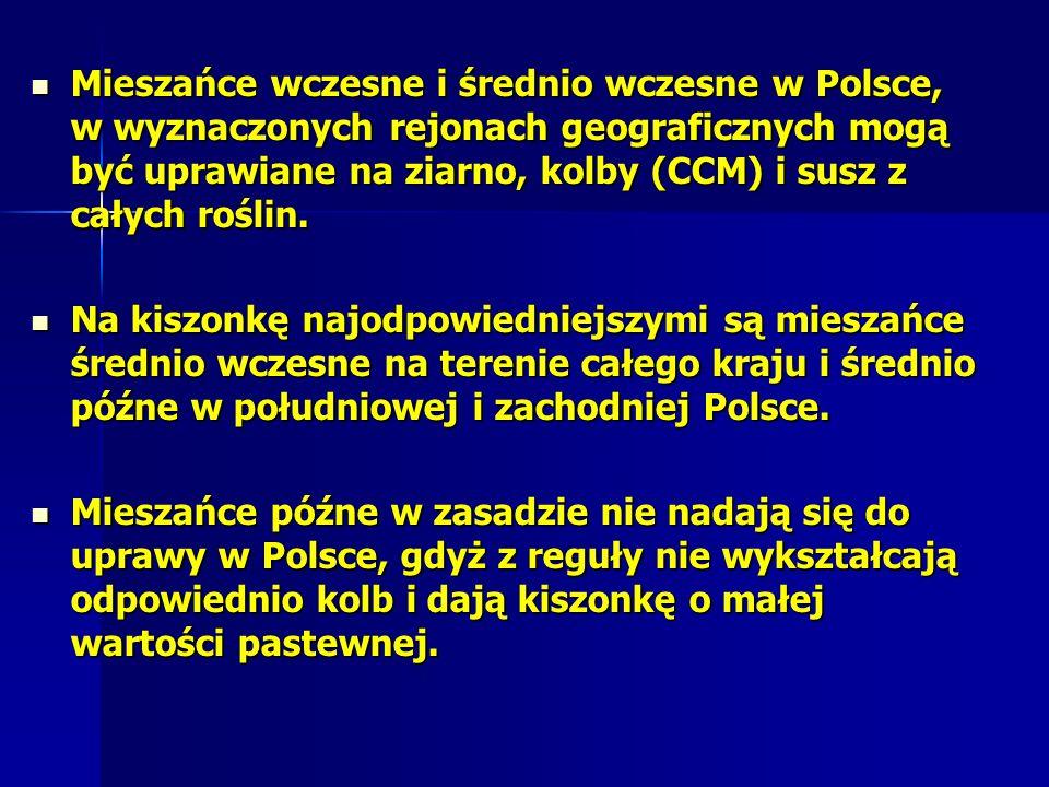 Mieszańce wczesne i średnio wczesne w Polsce, w wyznaczonych rejonach geograficznych mogą być uprawiane na ziarno, kolby (CCM) i susz z całych roślin.