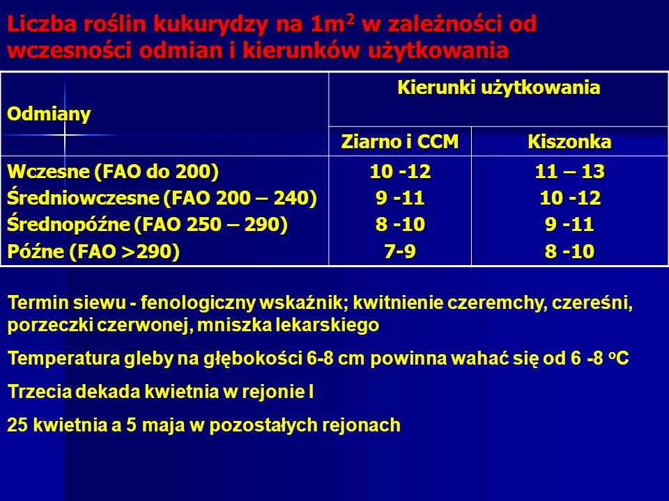 Liczba roślin kukurydzy na 1m 2 w zależności od wczesności odmian i kierunków użytkowania Odmiany Kierunki użytkowania Ziarno i CCM Kiszonka Wczesne (FAO do 200) Średniowczesne (FAO 200 – 240) Średnopóźne (FAO 250 – 290) Późne (FAO >290) 10 -12 9 -11 8 -10 7-9 11 – 13 10 -12 9 -11 8 -10 Termin siewu - fenologiczny wskaźnik; kwitnienie czeremchy, czereśni, porzeczki czerwonej, mniszka lekarskiego Temperatura gleby na głębokości 6-8 cm powinna wahać się od 6 -8 o C Trzecia dekada kwietnia w rejonie I 25 kwietnia a 5 maja w pozostałych rejonach