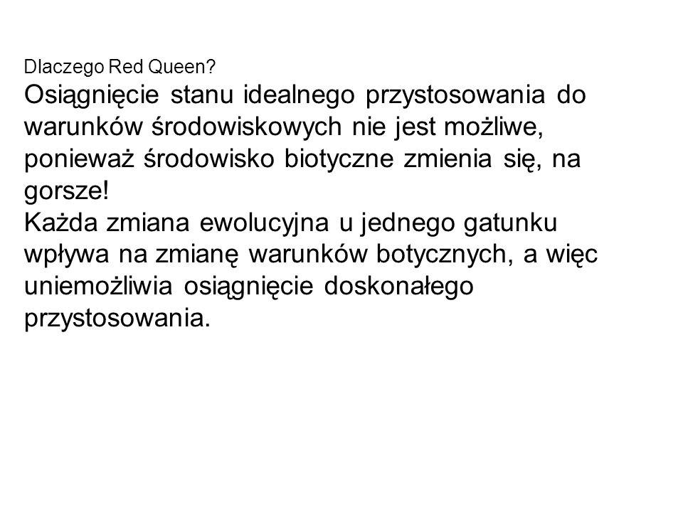 Dlaczego Red Queen? Osiągnięcie stanu idealnego przystosowania do warunków środowiskowych nie jest możliwe, ponieważ środowisko biotyczne zmienia się,