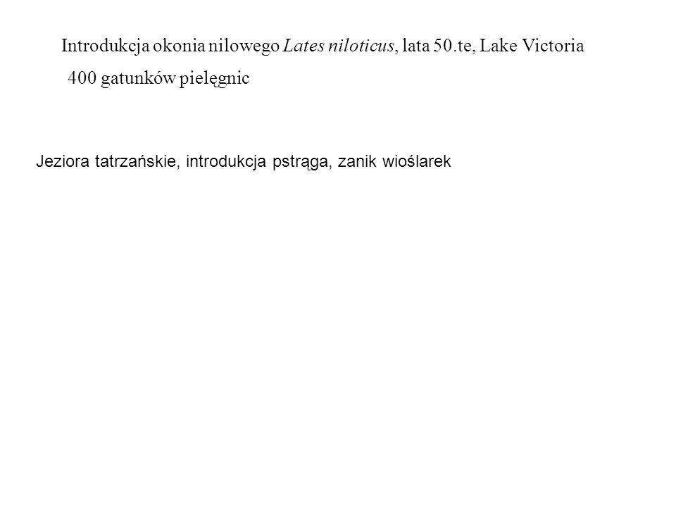 Introdukcja okonia nilowego Lates niloticus, lata 50.te, Lake Victoria 400 gatunków pielęgnic Jeziora tatrzańskie, introdukcja pstrąga, zanik wioślare