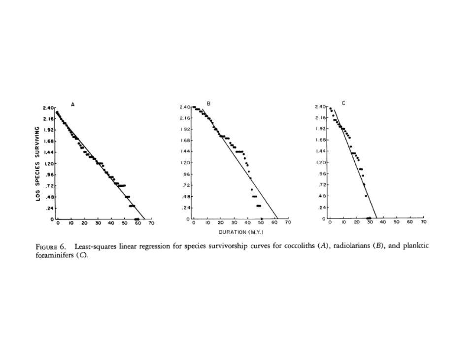 Zmiany liczebności w populacji ofiary są wynikiem wewnętrznego tempa wzrostu, które nie zależy od pojemności środowiska K, lecz od częstości terminalnych spotkań z drapieżca.